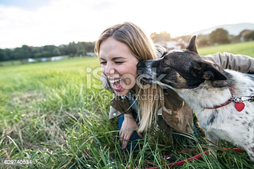 istock Beautiful young woman with dog in green sunny nature 629740534
