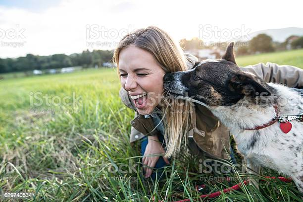 Beautiful young woman with dog in green sunny nature picture id629740534?b=1&k=6&m=629740534&s=612x612&h=2njfpeuo2 kx l u1 0wkwr43pv8vhhakwui 4hkolc=
