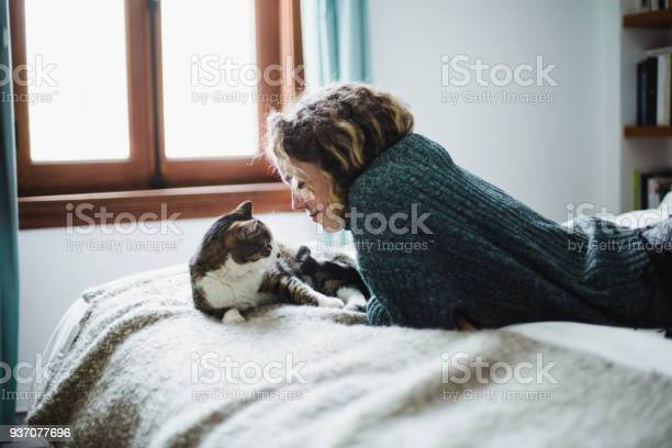 Beautiful young woman with her cat on a bed picture id937077696?b=1&k=6&m=937077696&s=612x612&h=tqxu 0 dn02iixnlriqheulh7zhy9pdgx9h7y wy3wa=