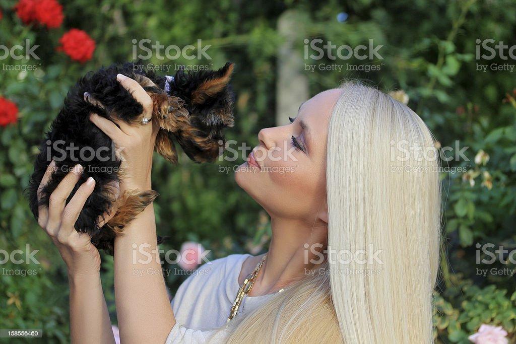 아름다운 젊은 여자의 긴 모발 쥠 작은가 경견 royalty-free 스톡 사진