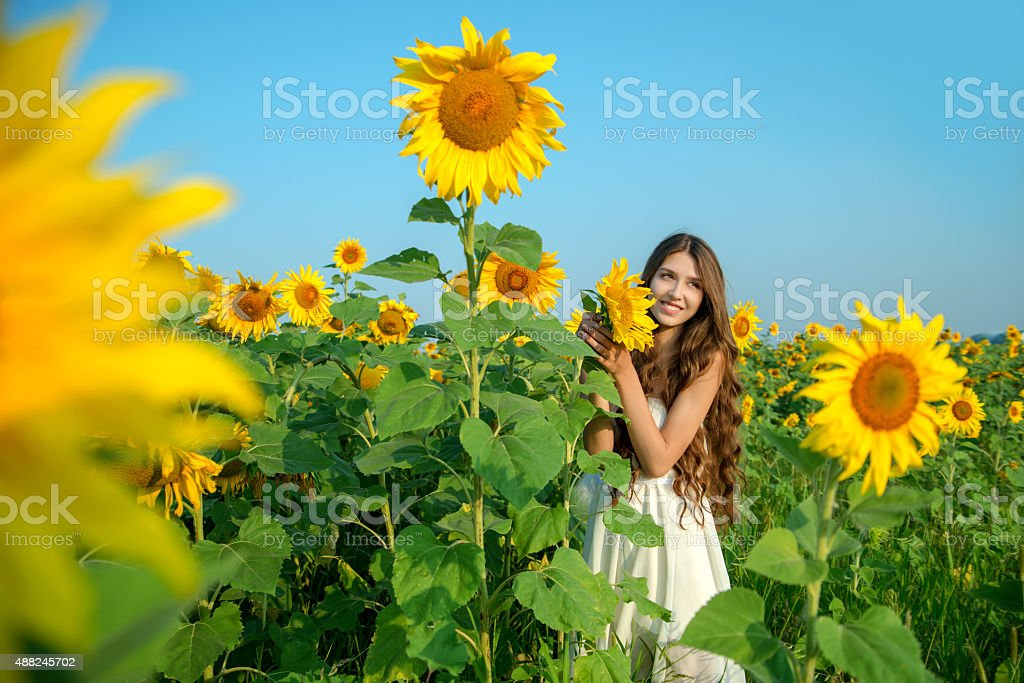 beautiful young woman with sunflower stock photo