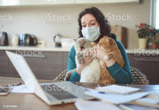 Beautiful young woman working at home in the mask with cat picture id1218797631?b=1&k=6&m=1218797631&s=612x612&h=k34baaqxteejp9yyxw scao3goehiradyp2hi18tnmo=
