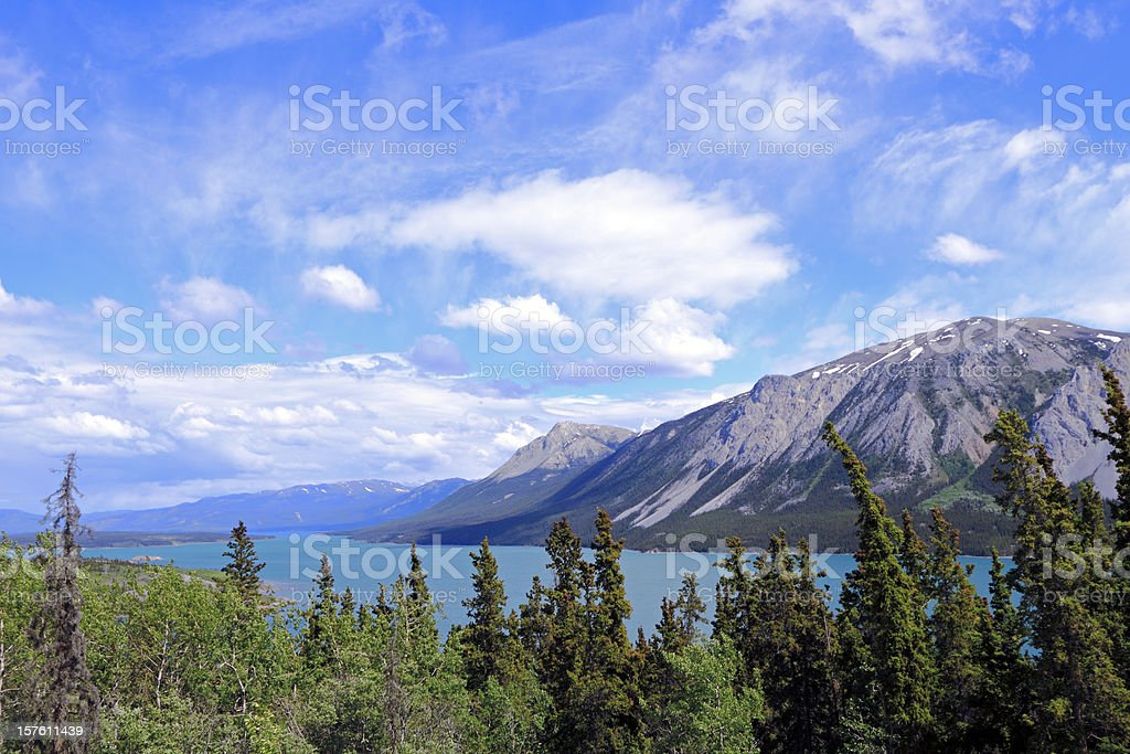 Beautiful Yukon royalty-free stock photo