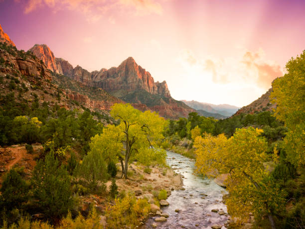 Beautiful Zion National Park Landscape (XXL)  zion national park stock pictures, royalty-free photos & images