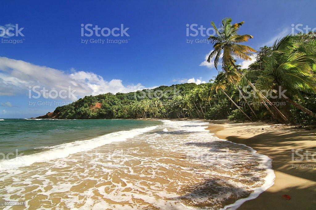 Beautifull beach in Dominica stock photo