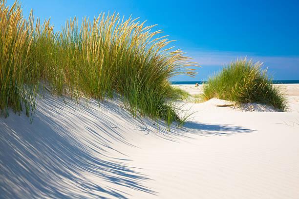 Wunderschöner Dünen von Amrum – Foto