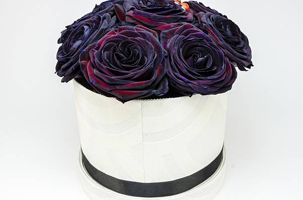 Beautifull flowers picture id505669552?b=1&k=6&m=505669552&s=612x612&w=0&h=rpvd0fmdqldgbinnothh4z2wwozwif51ta1upu4aovo=