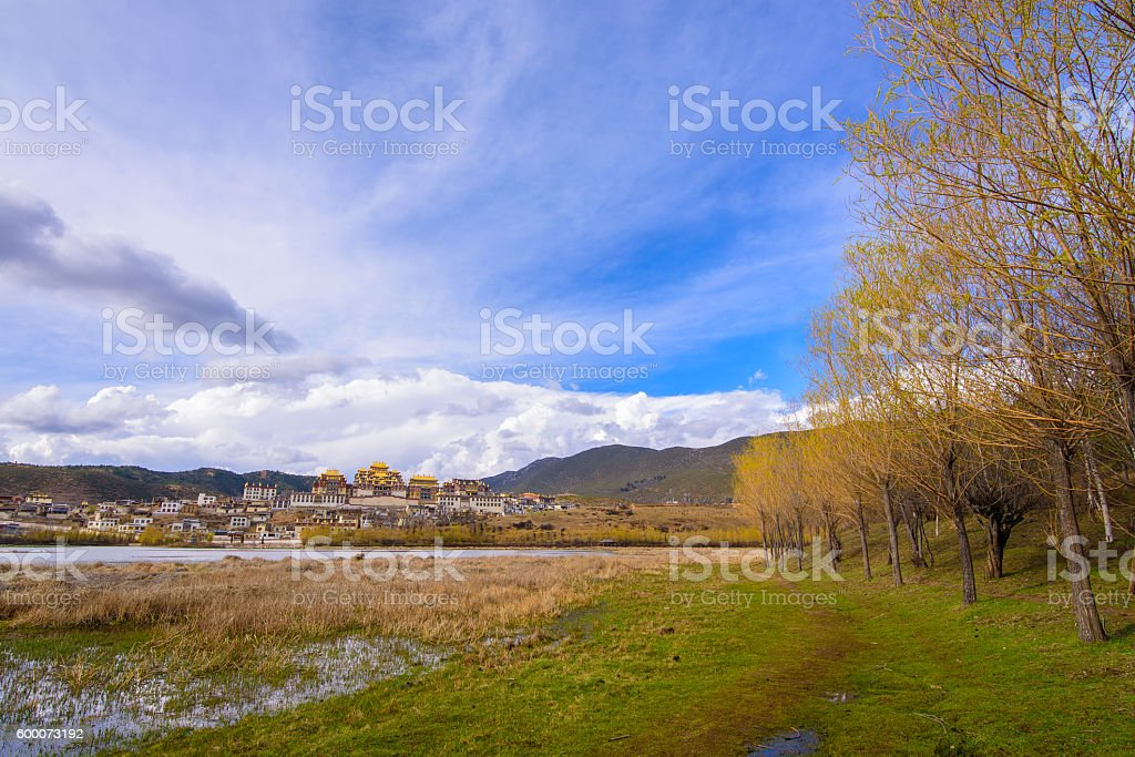 Beautifull Golden Forests and Lake stock photo