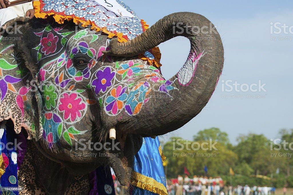 Wunderschön Bemalten Indischer Elefant Stock-Fotografie und mehr ...