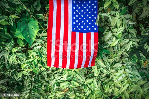 istock Beautifully star and striped United States of America flag 807367106