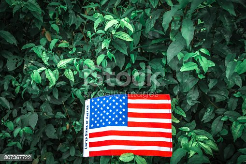 istock Beautifully star and striped United States of America flag 807367722