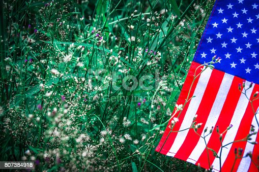 istock Beautifully star and striped United States of America flag 807384918
