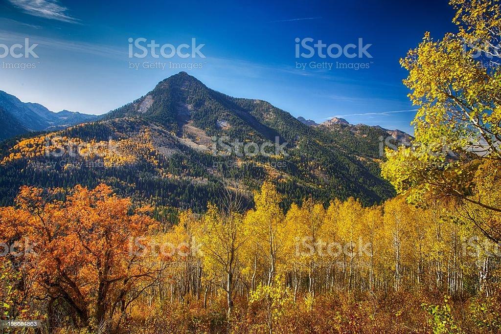 Beauty Across the Valley stock photo