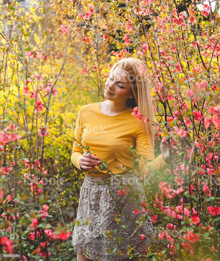 Beleza e natureza foto de stock royalty-free