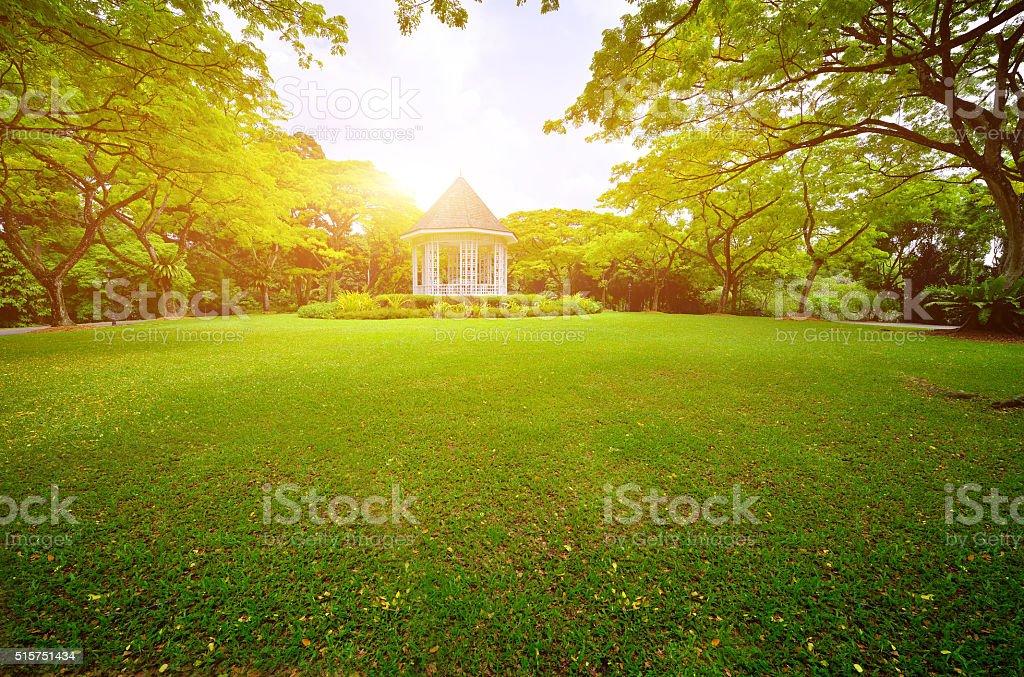 Schönheit und friedlichen Garten Lizenzfreies stock-foto