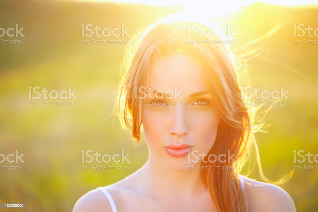 Beauty at sunset stock photo