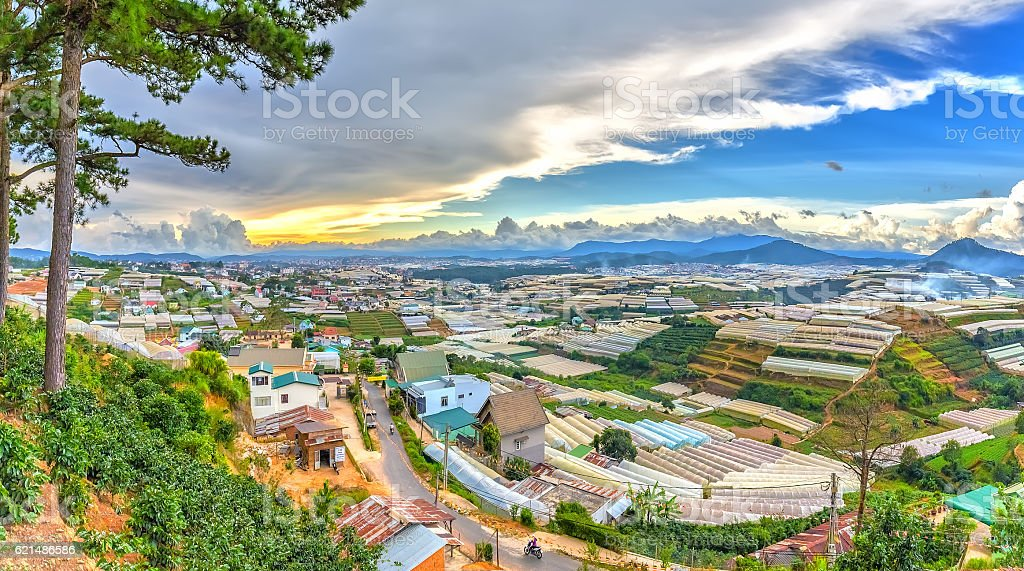 Beauty Da lat highland homes interspersed foto stock royalty-free