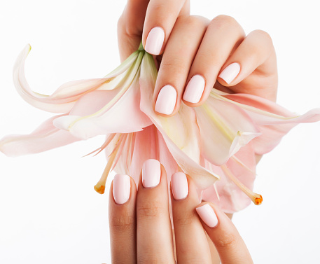 beauty delicate hands with manicure holding flower lily close up stock photo