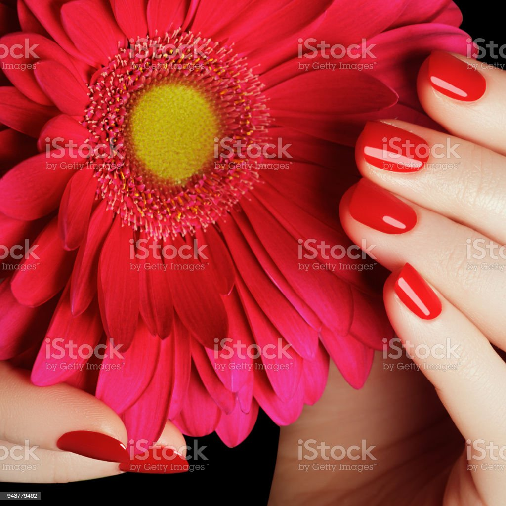 Beauty Delicate Hands With Manicure Holding Pink Flower Close Up