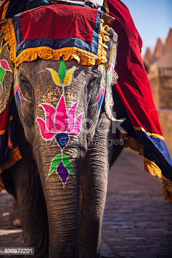 Beauty painted elephant in Amber Fort - India.