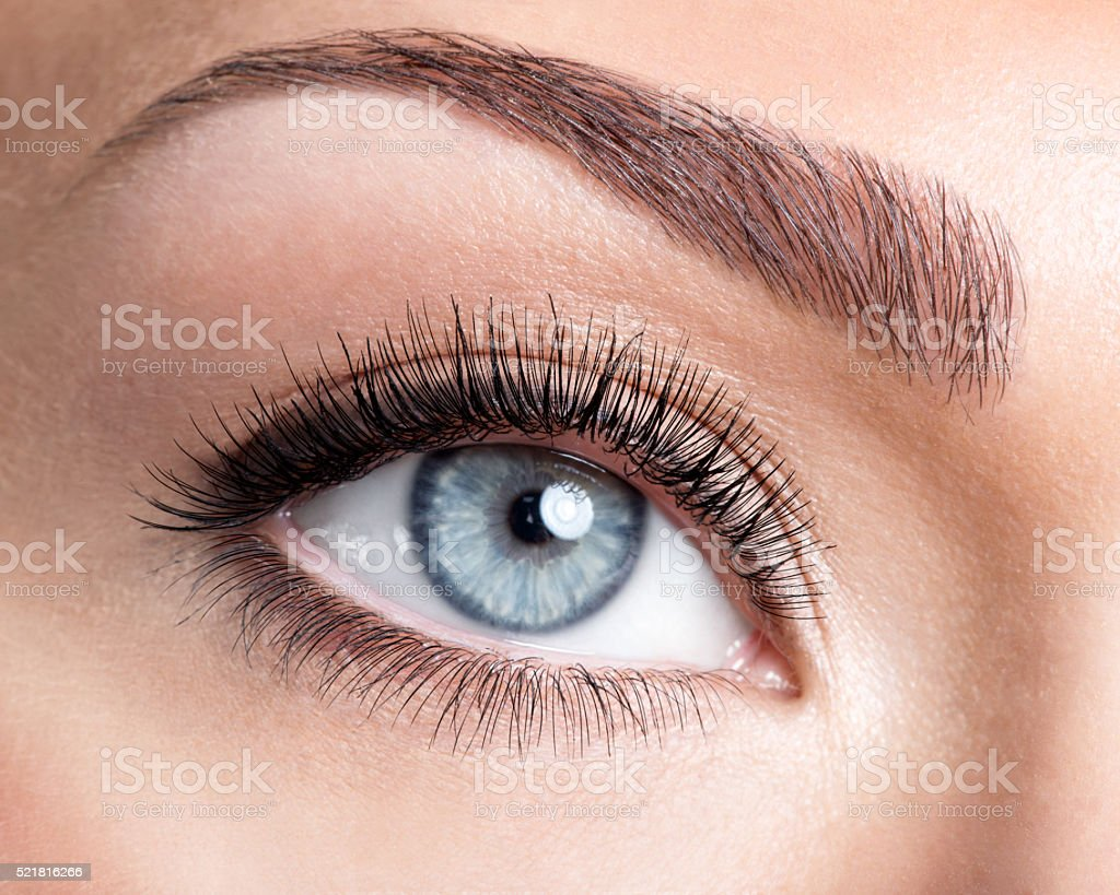 Beauty female eye with curl long false eyelashes stock photo