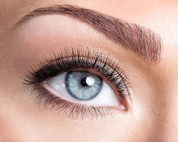 Beauty female eye with curl long false eyelashes Beauty female blue eye with curl long false eyelashes - macro shot over white background false eyelash stock pictures, royalty-free photos & images