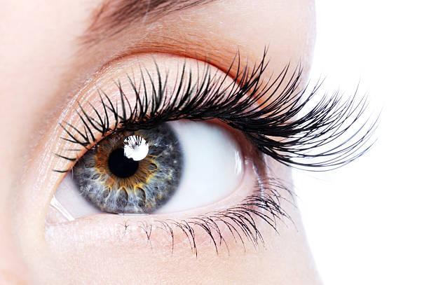 Beauty female eye with curl long false eyelashes Beauty female eye with curl long false eyelashes - macro shot over white background false eyelash stock pictures, royalty-free photos & images