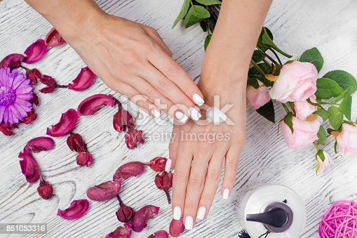 1151624350istockphoto Beauty female hands cream for hands flowers 851053316