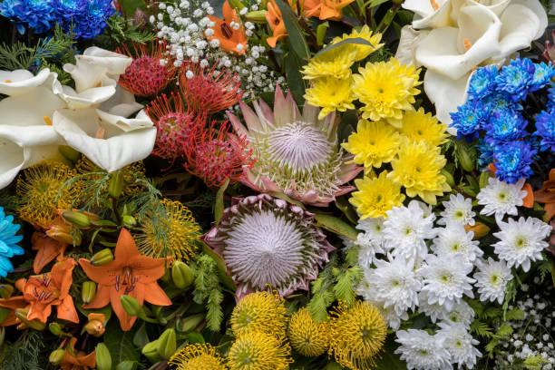 schöne blumendekoration mit bunten tropischen blumen - protea strauß stock-fotos und bilder