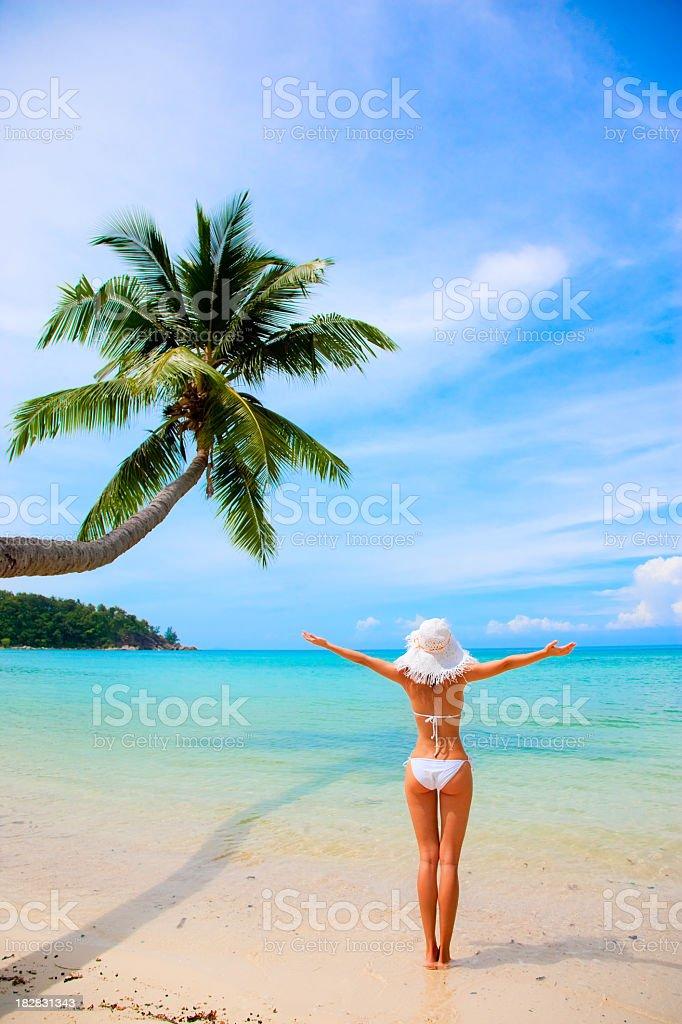 beauty girl in bikini on sea background stock photo