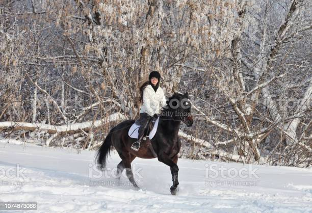 Beauty girl riding her horse through snow woods picture id1074873066?b=1&k=6&m=1074873066&s=612x612&h=v628unztpc0 fat49l2xuqiwg klrsd6vjhtlz4sff8=
