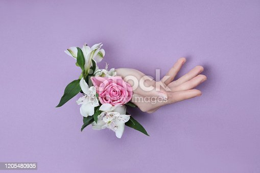 istock Beauty Hand with flowers in a hole in a purple paper background. Nature hand Cosmetics, natural flower extract, moisturizing and softening the skin 1205480935
