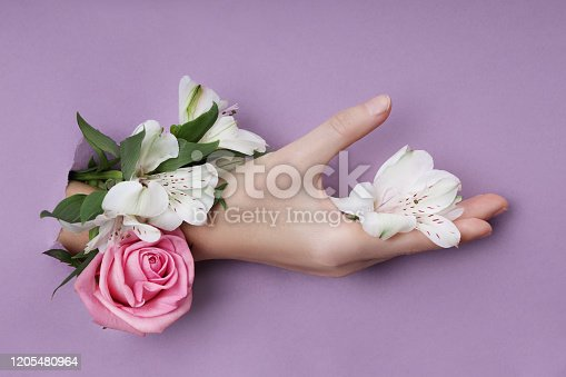 istock Beauty Hand with flowers in a hole in a purple paper background. Nature hand Cosmetics, natural flower extract, moisturizing and softening the skin 1205480964