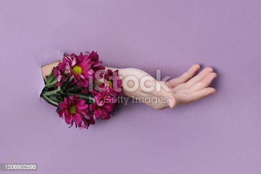 istock Beauty Hand with flowers in a hole in a purple paper background. Nature hand Cosmetics, natural flower extract, moisturizing and softening the skin 1206602593