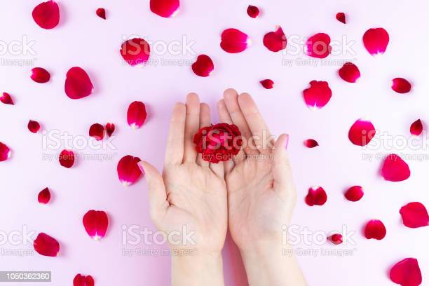 Beauty hands with makeup flowers picture id1050362360?b=1&k=6&m=1050362360&s=612x612&h=xctxqsd6ut0snsvc6g8ruwp6sz8exy rdvefoaugh94=