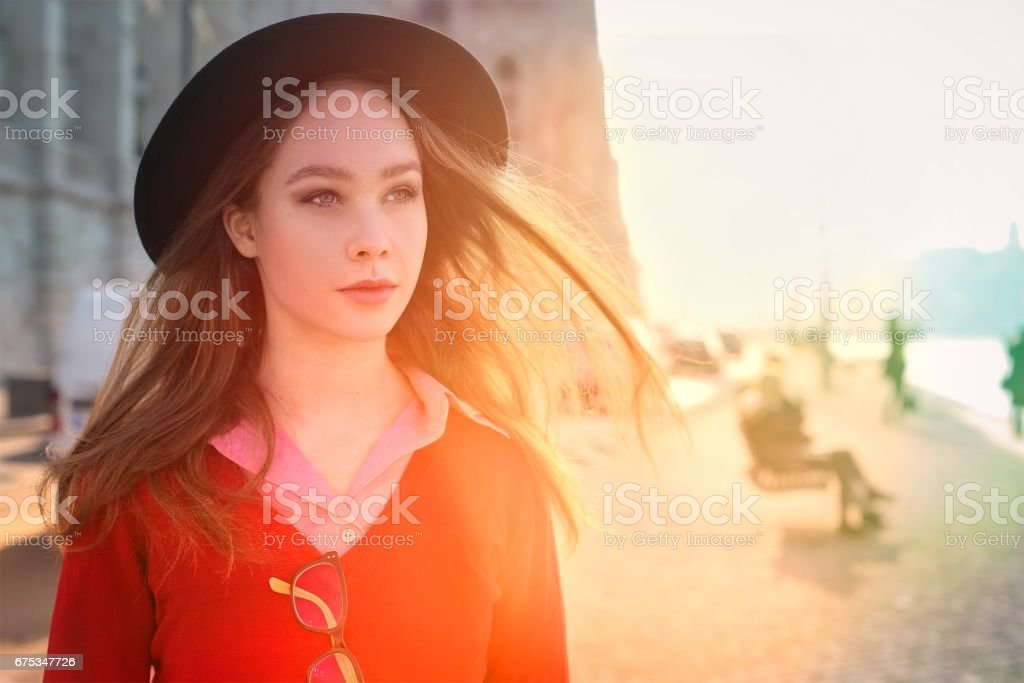 Beauty in Budapest stock photo