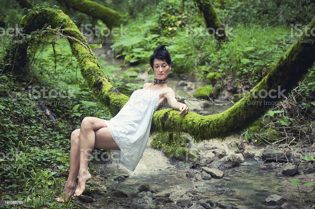 Beauty in Forest Play royalty-free stock photo
