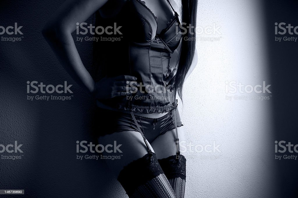 Beauty in lingerie royalty-free stock photo