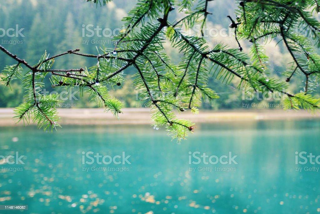 Beauté dans la nature au parc national de la vallée de Jiuzhaigou photo libre de droits