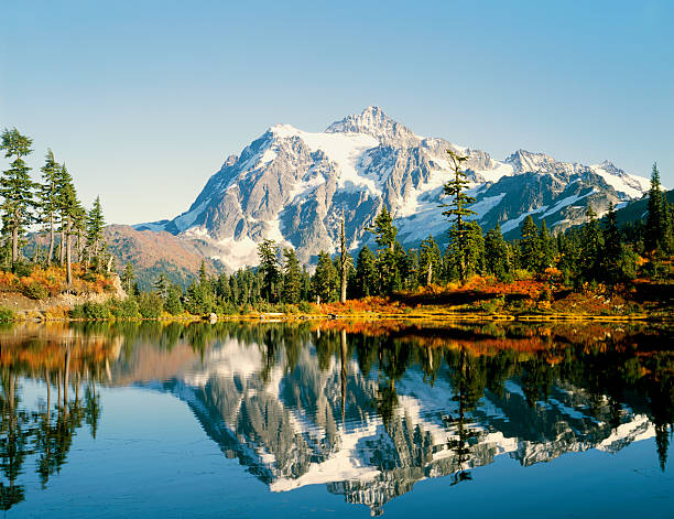 Beleza natural-Natureza - foto de acervo