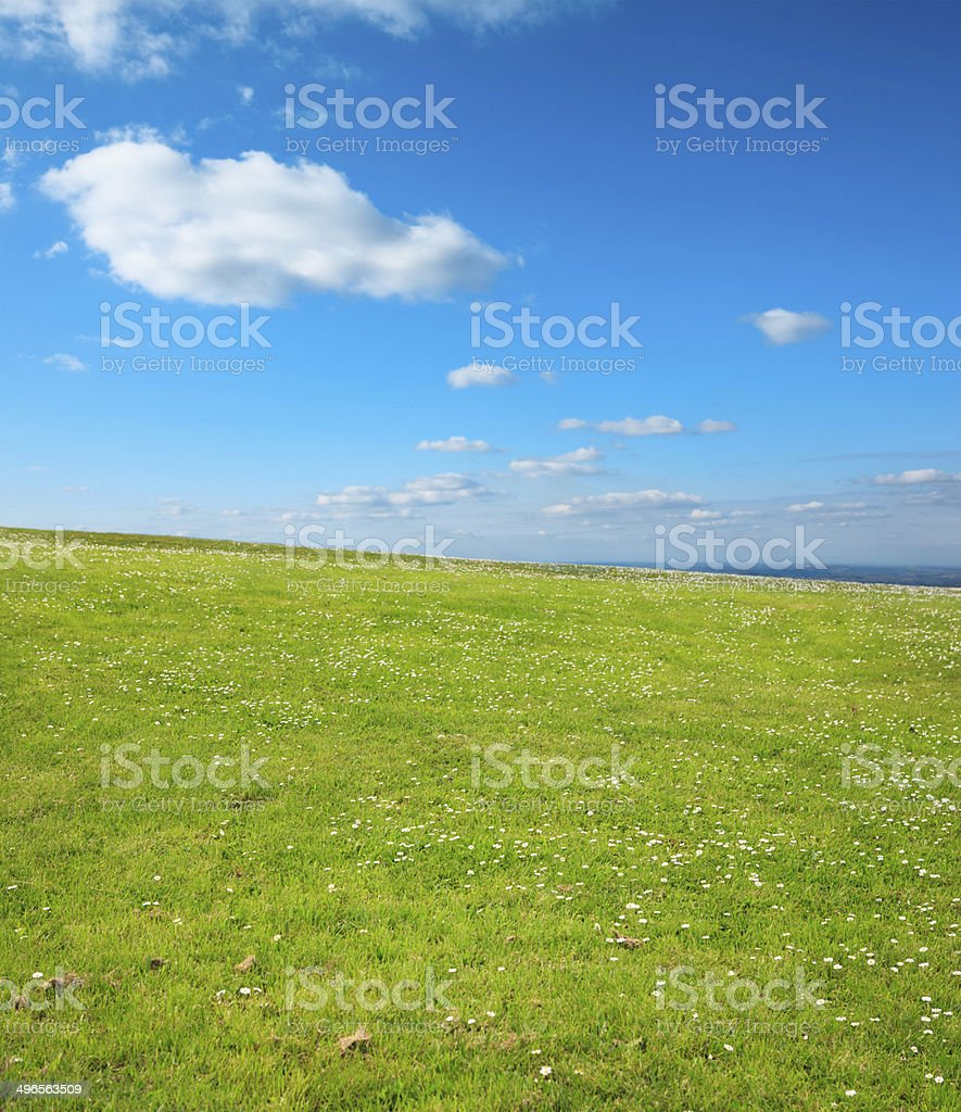 Beauty in nature - Spring landscape background royalty-free stock photo