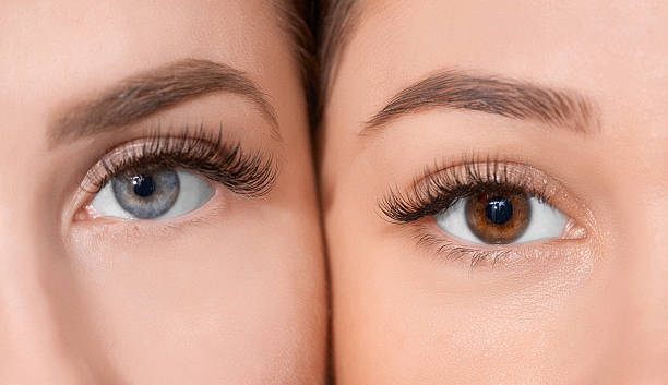 beauty in our eyes front view of human eyes looking at camera.blue and hazel colors.false eyelashes. false eyelash stock pictures, royalty-free photos & images