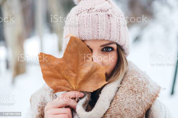 Photo of Beauty in the snow