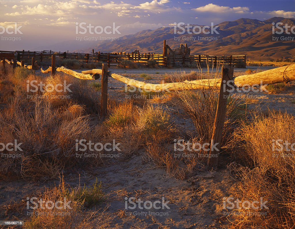 Beauty in the Wild West (Pg) royalty-free stock photo