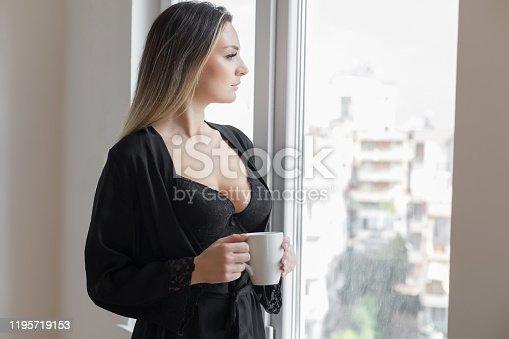 Beauty near window