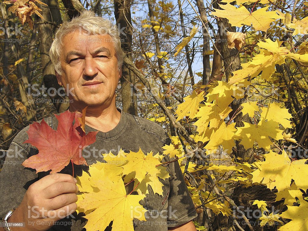Beauty of Fall royalty-free stock photo