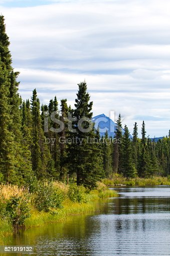 Beauty of Kelly Lake reflects Alaska's beautiful summer scenes at Kenai National Wildlife Refuge.  Vertical landscape with copy space in sky.