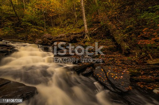Autumn river scenery with dry red leaves. Picture was taken at Ricketts Glen park in Pennsylvania