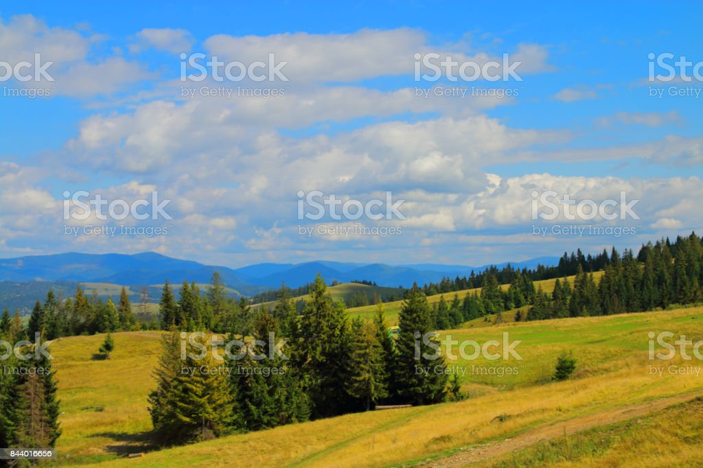 Beauty of the Carpathian Mountains. stock photo