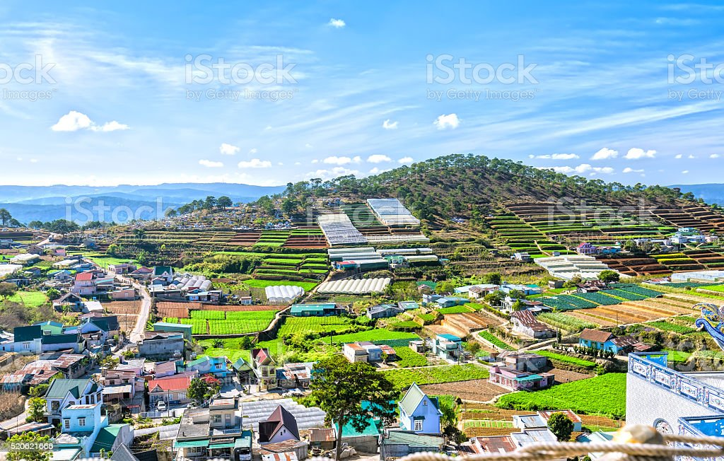 Beauty on the plateau hills of Dalat stock photo